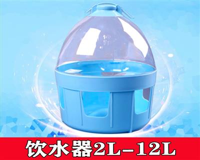 信鸽用品用具信鸽饮水器水壶鸽子水槽鸟用水壶透明