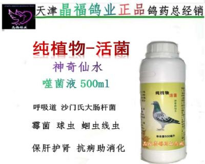 纯植物-活菌(神奇仙水)