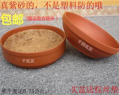 紫砂巢盆(厂家批发)