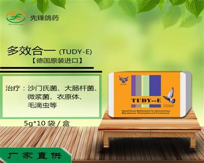 多效合一(TUDY-E)