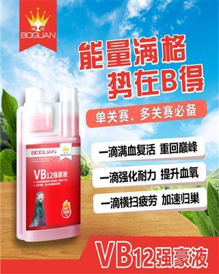 VB12��豪液