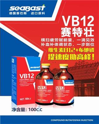 赛巴斯.VB12赛特壮-消除肌肉痉挛及运动疲劳,快速提升速度