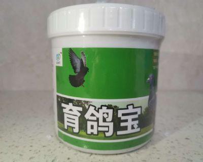台湾育鸽宝