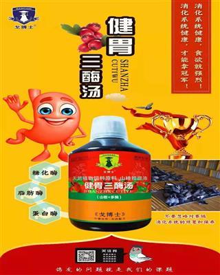 健胃三酶汤