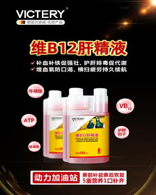 维B12肝精液