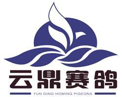 云鼎绿色文化赛鸽村 联名公共账号通知