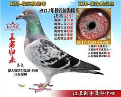 江苏翔圣赛鸽中心2018年第二届海翔 三关鸽王大奖赛规程