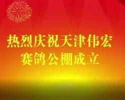 十二位拳王齐祝天津伟宏赛鸽公棚年年爆棚!