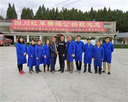 欢迎中国新生代拍卖师唐果先生加入四川红军赛鸽公棚
