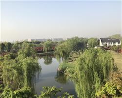 江苏长江国际公棚现场报告――满园秀色 春到长江