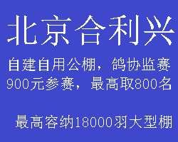 北京合利兴赛鸽公棚2019年秋季比赛章程