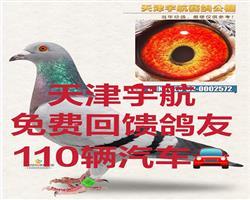 天津宇航赛鸽公棚小棚回馈110辆豪车2021年首届秋季三关竞赛规程